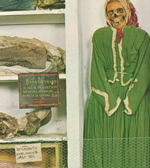 image of a skeleton dressed like a woman in a museum